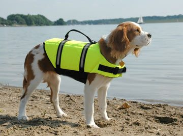 """Paws Aboard dog life jacket"" from PawsAboard.com"