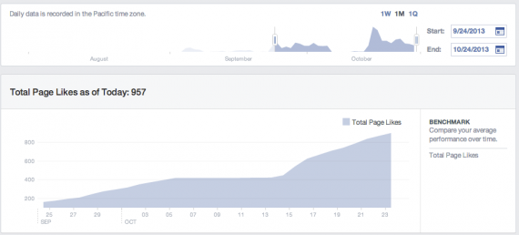 Facebook Insights Likes