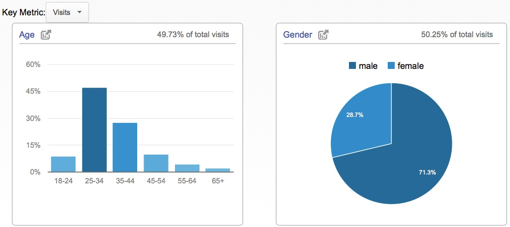 Google Analytics demographics report.