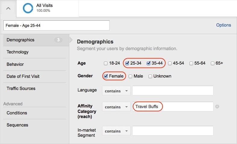 Google Analytics Demographics Advanced Segments