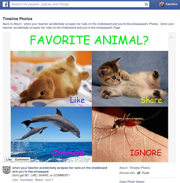 Facebook has changed News Feed to reduce the appearance of spam pages.