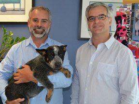 Lessons Learned: Love for Pets Drives Online Vet Shops