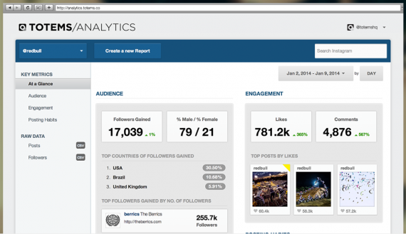 Totems provides detailed analytics for your Instagram account.