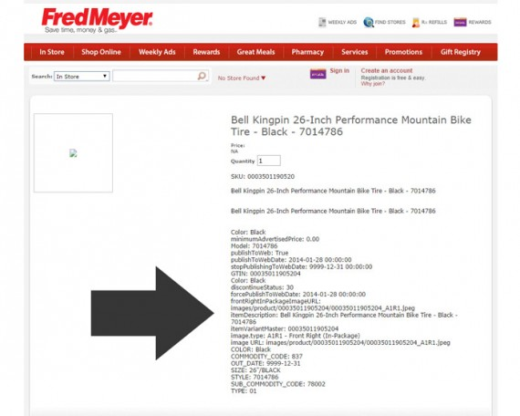 The product detail page had data seemingly dumped from a database.