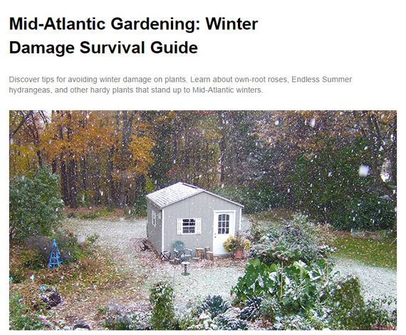 Lowe's regularly publishes seasonal articles with simply, often brief, tips and suggestions.
