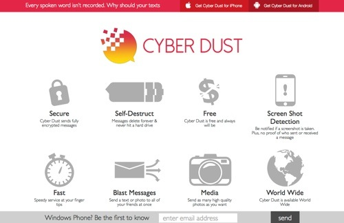 Cyber Dust website