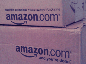 How to Prosper in an Amazon.com World