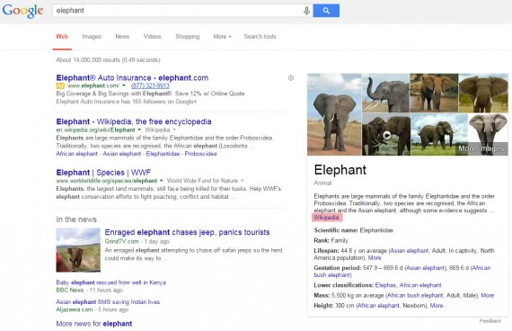 "Google search result for ""elephants."""