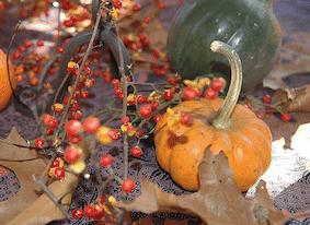 8 Thanksgiving Day Social-media Promotional Ideas