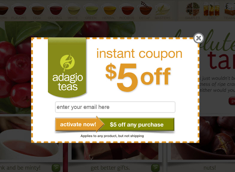 Consider offering up an instant coupon. Adagio.com, a retailer of teas, offers a generous $5 off in exchange for an email address.