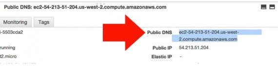 The public DNS is the web address for your EC2 instance.