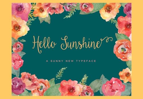 Hello Sunshine.