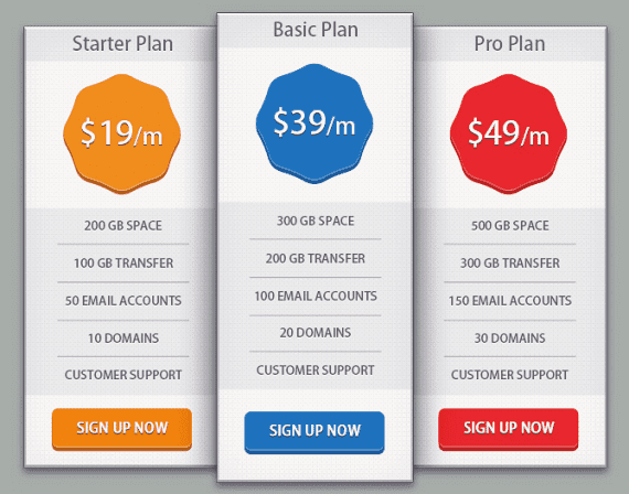 Example of a plan choice for service sites. Source: sitepoint.