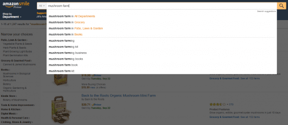 Amazon's autosuggest search feature.