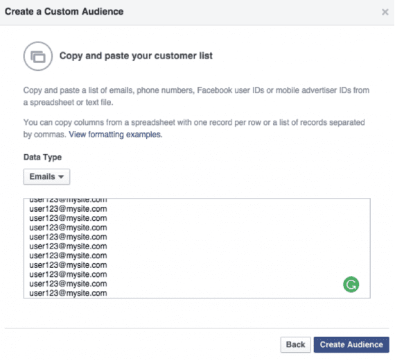 "Paste in your email addresses, and click on ""Create Audience."""