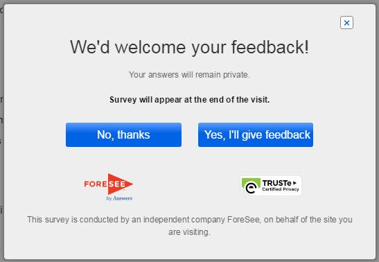 Foresee is a popular feedback service used by big etailers.