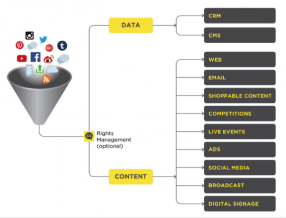 User-generated content can flow into digital properties from many sources. Source: Stackla.