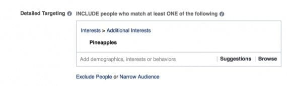 The three options in Detailed Targeting: Include, Exclude, and Narrow.