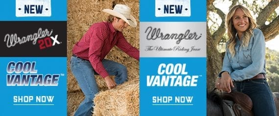 This is an example of two Wrangler stock banner ads that Wrangler retailers may use for co-op ads. While these ads might work well, you can often create your own, brand-specific ads, get them approved, and still receive co-op.