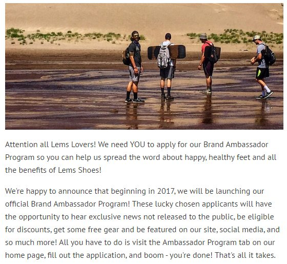 Lems is seeking its most passionate customers as brand ambassadors in 2017.
