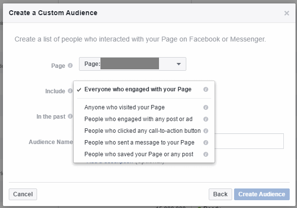"""""""Page"""" options within Engagement on Facebook."""