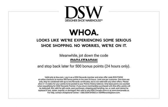 DSW's server error page shown during a recent redesign encouraged shoppers to return by offering a discount.