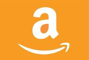 amazon brand registry cost