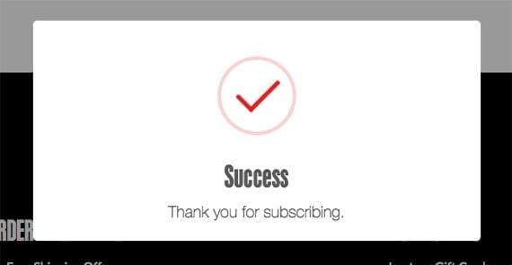 An animated success message tells a user he has successfully joined the mailing list.
