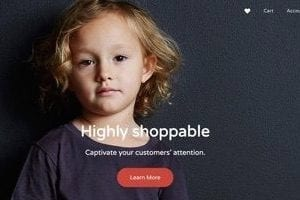 15 Quality Themes for BigCommerce