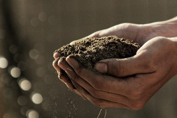 Building an audience to cultivate big content marketing projects is analogous to preparing soil.