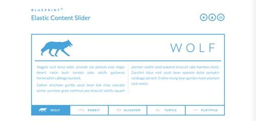 Elastic Content Slider