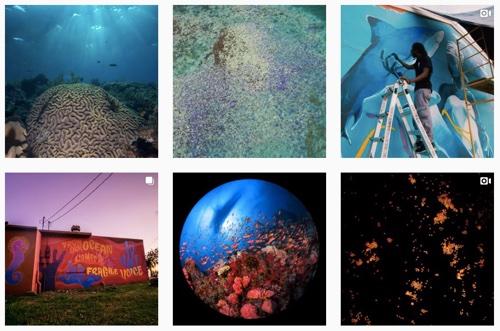 #GlowingGone on Instagram.