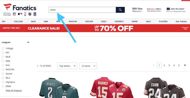 """Screenshot of Fanatic's site search for """"jersey"""""""