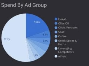 Screenshot of a pie graph on the Data Studio template