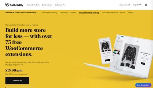 Capture d'écran du commerce électronique WordPress géré par GoDaddy