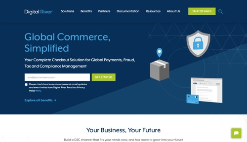 Home page of Digital River
