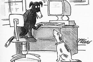 Screenshot of a New Yorker cartoon showing two dogs in front of a computer
