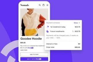 Screenshot of Shop Pay web page