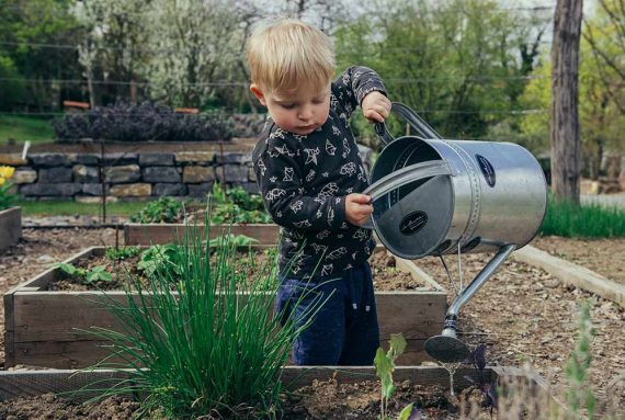 Photo of a boy in a garden pouring water on plants