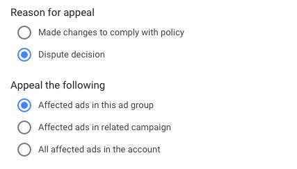 Screenshot from Google Ads interface showing the options for appealing