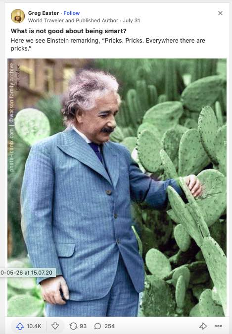 """Screencapture from Quora showing a photo of Einstein with his quote """"Pricks. Pricks. Everywhere there are pricks."""""""
