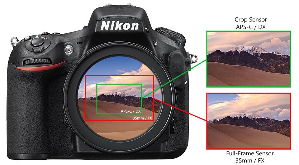 Illustration from PhotographyLife.com of a Nikon camera showing a crop sensor and full-frame sensor.