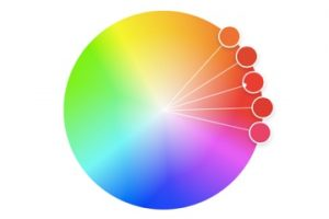 Image of a color wheel from Adobe Color