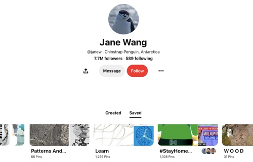 Screen capture of the Jane Wang Pinterest page