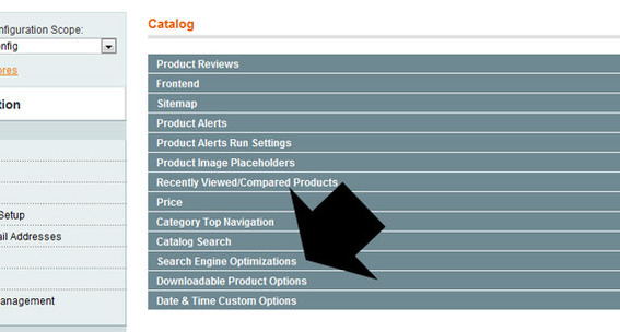 Detail of Magento admin showing 'Search Engine Optimizations' tab.