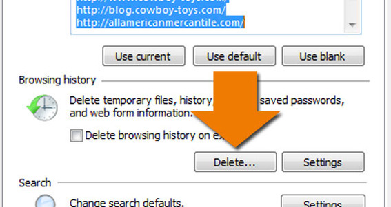 "Detail of the Browsing History's ""Delete"" button."