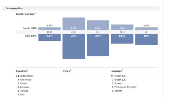 Facebook Insights provides surprisingly good demographic information about users.