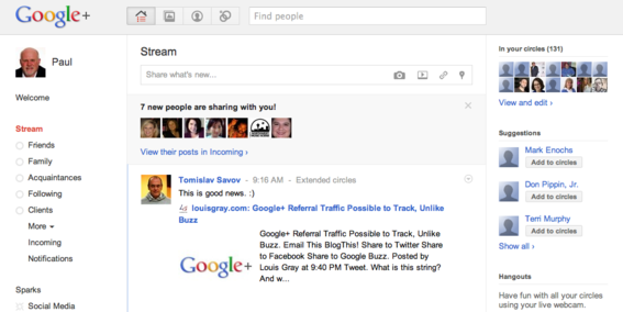 Stream is to Google+ what Newsfeed is to Facebook.
