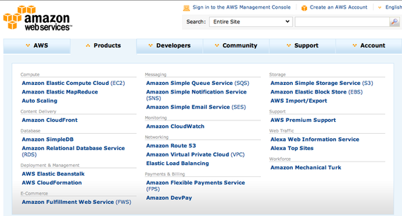 Amazon Web Services is a suite of hosting and computing tools.