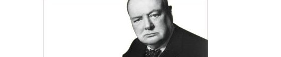 Winston Churchill Lectures, by Rufus J. Fears.